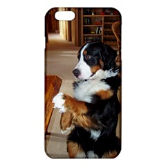 Bernese Mountain Dog Begging iPhone 6 Plus/6S Plus TPU Case