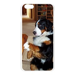 Bernese Mountain Dog Begging Apple Seamless iPhone 6 Plus/6S Plus Case (Transparent)