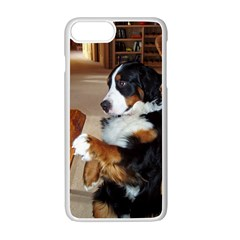 Bernese Mountain Dog Begging Apple iPhone 7 Plus White Seamless Case