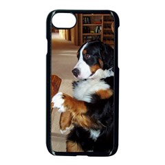 Bernese Mountain Dog Begging Apple iPhone 7 Seamless Case (Black)
