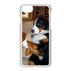 Bernese Mountain Dog Begging Apple iPhone 7 Seamless Case (White)