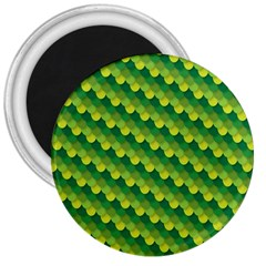Dragon Scale Scales Pattern 3  Magnets