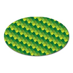 Dragon Scale Scales Pattern Oval Magnet