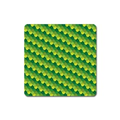 Dragon Scale Scales Pattern Square Magnet