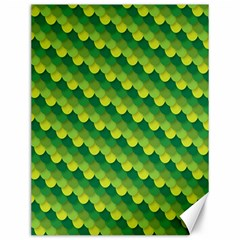 Dragon Scale Scales Pattern Canvas 12  X 16