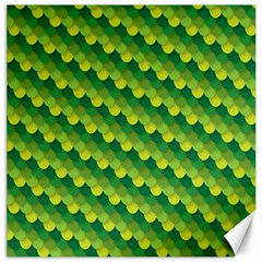 Dragon Scale Scales Pattern Canvas 16  X 16