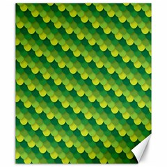 Dragon Scale Scales Pattern Canvas 20  X 24