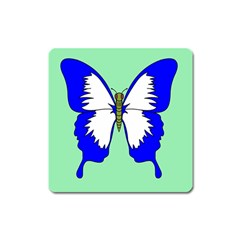 Draw Butterfly Green Blue White Fly Animals Square Magnet