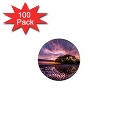 Landscape Reflection Waves Ripples 1  Mini Magnets (100 Pack)