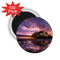 Landscape Reflection Waves Ripples 2 25  Magnets (100 Pack)