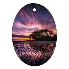 Landscape Reflection Waves Ripples Oval Ornament (Two Sides)
