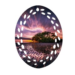 Landscape Reflection Waves Ripples Oval Filigree Ornament (two Sides)