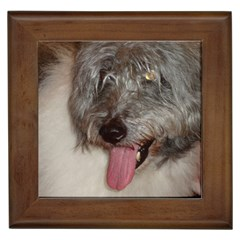 Old English Sheepdog Framed Tiles