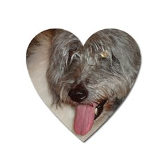 Old English Sheepdog Heart Magnet
