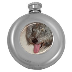 Old English Sheepdog Round Hip Flask (5 oz)