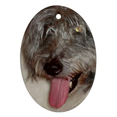 Old English Sheepdog Oval Ornament (Two Sides)