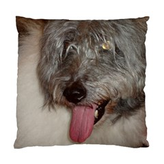 Old English Sheepdog Standard Cushion Case (Two Sides)