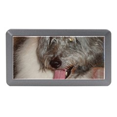 Old English Sheepdog Memory Card Reader (Mini)