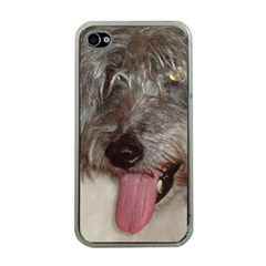 Old English Sheepdog Apple iPhone 4 Case (Clear)