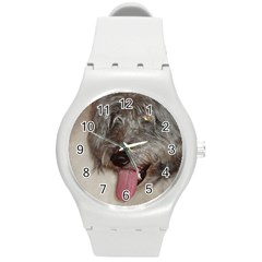 Old English Sheepdog Round Plastic Sport Watch (M)