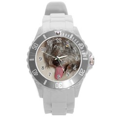Old English Sheepdog Round Plastic Sport Watch (L)