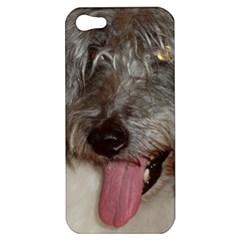 Old English Sheepdog Apple iPhone 5 Hardshell Case