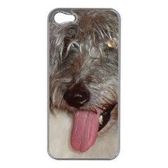 Old English Sheepdog Apple iPhone 5 Case (Silver)