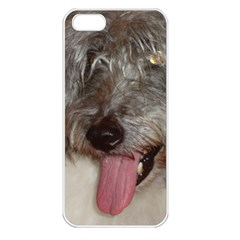 Old English Sheepdog Apple iPhone 5 Seamless Case (White)