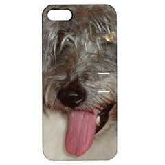 Old English Sheepdog Apple iPhone 5 Hardshell Case with Stand