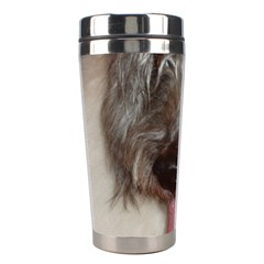 Old English Sheepdog Stainless Steel Travel Tumblers