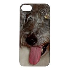 Old English Sheepdog Apple iPhone 5S/ SE Hardshell Case