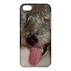 Old English Sheepdog Apple iPhone 5C Hardshell Case