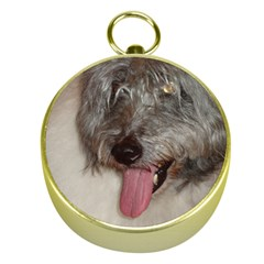 Old English Sheepdog Gold Compasses