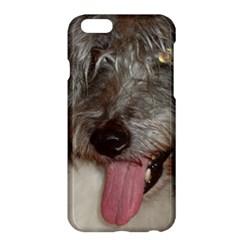 Old English Sheepdog Apple iPhone 6 Plus/6S Plus Hardshell Case