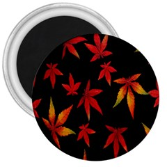 Colorful Autumn Leaves On Black Background 3  Magnets
