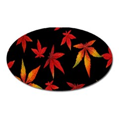 Colorful Autumn Leaves On Black Background Oval Magnet