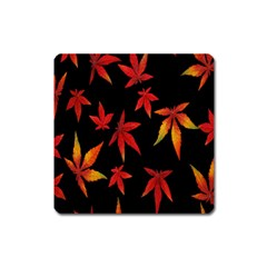 Colorful Autumn Leaves On Black Background Square Magnet