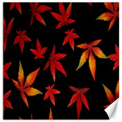 Colorful Autumn Leaves On Black Background Canvas 20  X 20