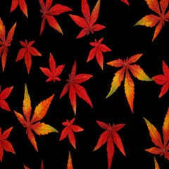 Colorful Autumn Leaves On Black Background Magic Photo Cubes