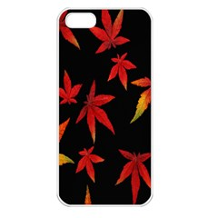 Colorful Autumn Leaves On Black Background Apple Iphone 5 Seamless Case (white)