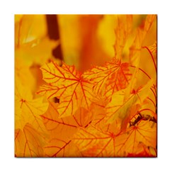 Bright Yellow Autumn Leaves Tile Coasters
