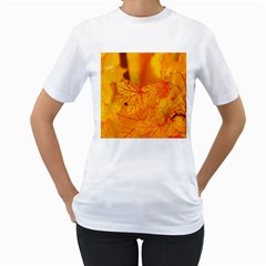 Bright Yellow Autumn Leaves Women s T Shirt (white) (two Sided)