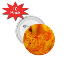 Bright Yellow Autumn Leaves 1 75  Buttons (10 Pack)
