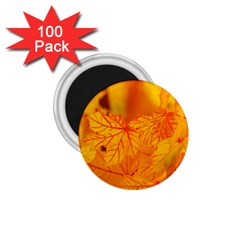 Bright Yellow Autumn Leaves 1 75  Magnets (100 Pack)
