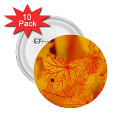 Bright Yellow Autumn Leaves 2 25  Buttons (10 Pack)