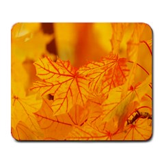 Bright Yellow Autumn Leaves Large Mousepads