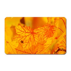 Bright Yellow Autumn Leaves Magnet (rectangular)