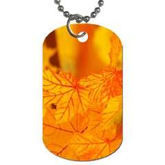 Bright Yellow Autumn Leaves Dog Tag (two Sides)