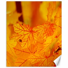 Bright Yellow Autumn Leaves Canvas 8  X 10