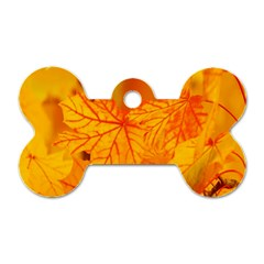 Bright Yellow Autumn Leaves Dog Tag Bone (one Side)